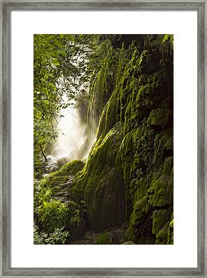 Gorman Falls Ray Of Light Framed Print by Jonathan Davison
