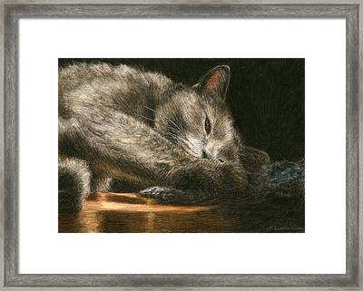Sunlight Framed Print