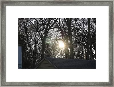 Sunlight Framed Print by Stacie  Goodloe