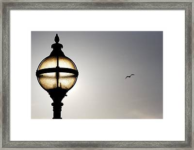 Sunlight Framed Print by Wendy Wilton