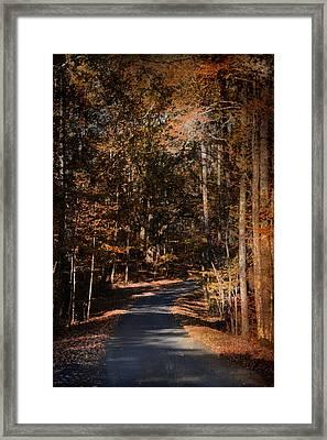Sunlit Autumn Path Framed Print by Jai Johnson