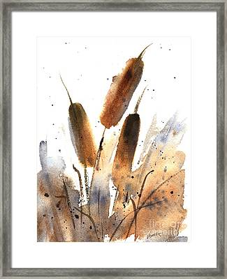 Sunlit Cattails Framed Print