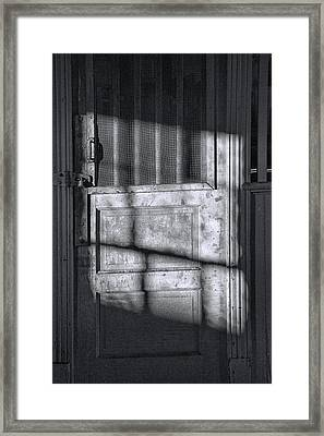 Sunlit Door In Black And White Framed Print by Randall Nyhof