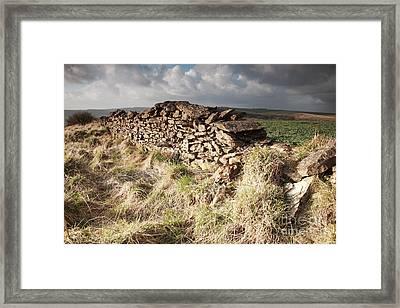 Sunlit Dry Stone Wall Framed Print by Deborah Benbrook