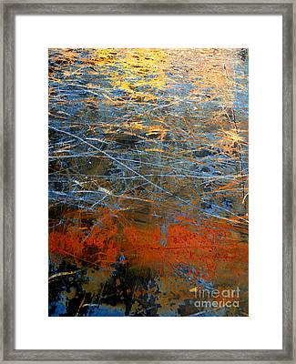 Sunlit Fibers Framed Print