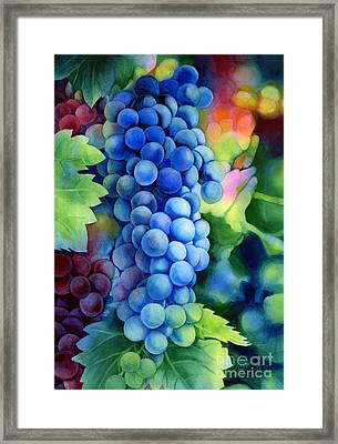 Sunlit Grapes Framed Print by Hailey E Herrera