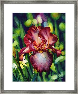 Sunlit Iris Framed Print by Hailey E Herrera