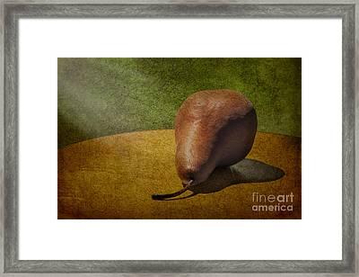 Sunlit Pear Framed Print