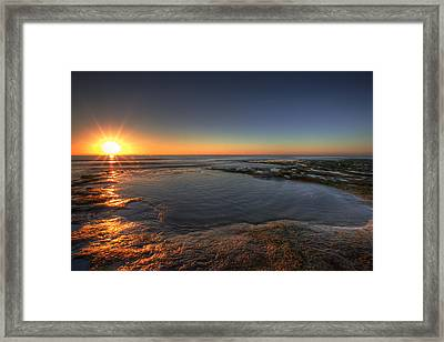 Sunlit Pool Framed Print