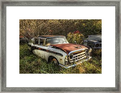 Sunlit Rambler Framed Print by Debra and Dave Vanderlaan