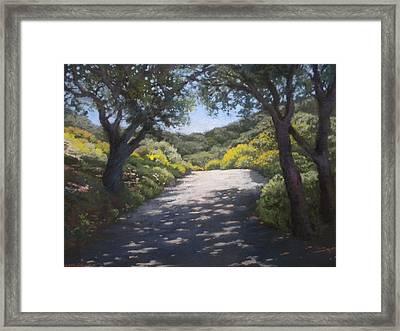 Sunlit Road Framed Print by Maralyn Miller