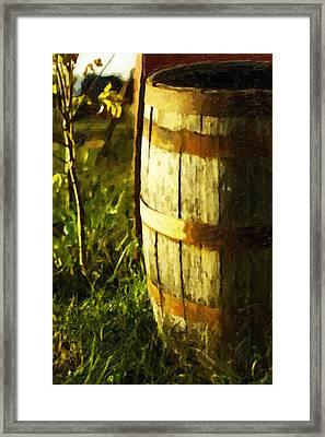 Sunlit Wooden Barrel-three Framed Print by David Allen Pierson