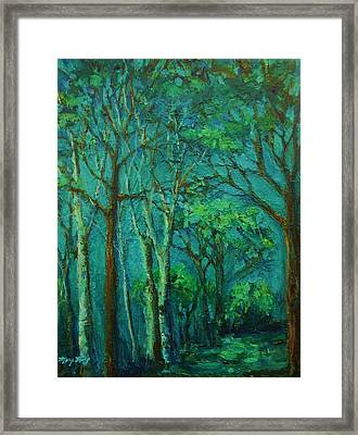 Sunlit Woodland Path Framed Print