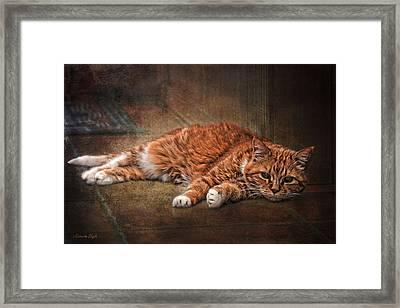 Sunning Framed Print by Karen Slagle