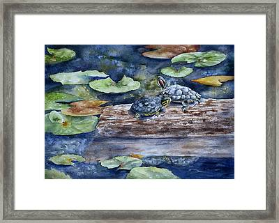 Framed Print featuring the painting Sunning Sliders by Mary McCullah
