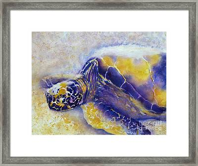 Sunning Turtle Framed Print by Carolyn Jarvis