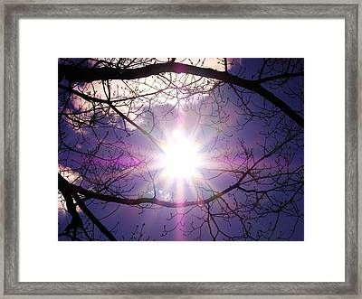Framed Print featuring the photograph Sunny Afternoon by Sherman Perry