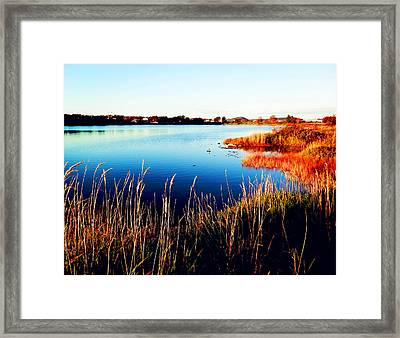 Framed Print featuring the photograph Sunny Afternoon by Zinvolle Art