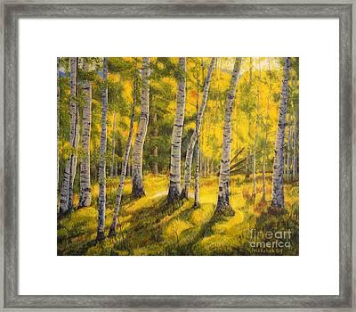 Sunny Birch Framed Print by Veikko Suikkanen
