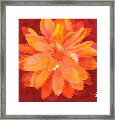 Sunny Burst Of Color Floral Framed Print by Anne-Elizabeth Whiteway