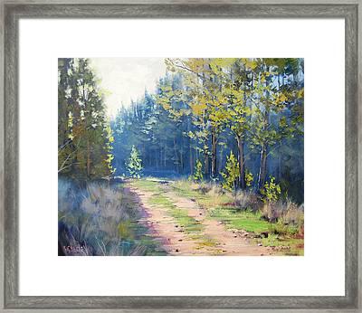 Sunny Corner Pine Forest Framed Print