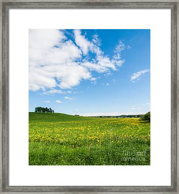 Sunny Day At The Fields Of Gold Framed Print