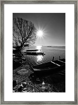 Sunny Day Framed Print by Davorin Mance