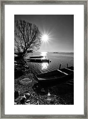 Sunny Day Framed Print