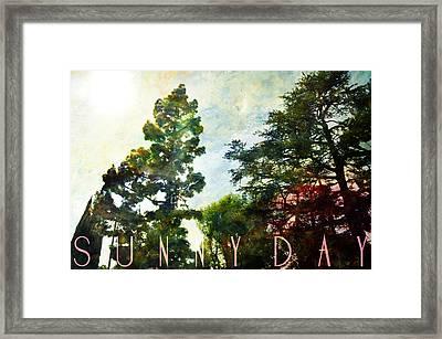 Sunny Day Framed Print by John Fish