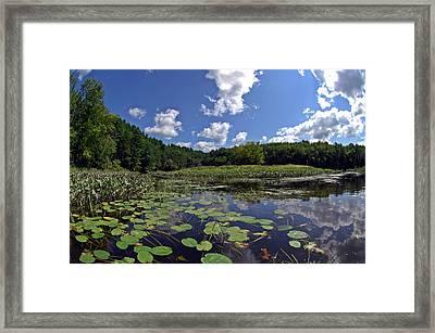Sunny Day On The Merrimack Framed Print