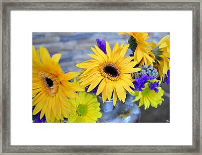 Framed Print featuring the photograph Sunny Days by Ally  White