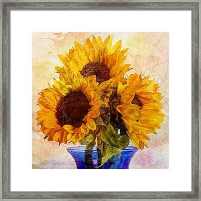 Sunny Delight Framed Print by Heidi Smith