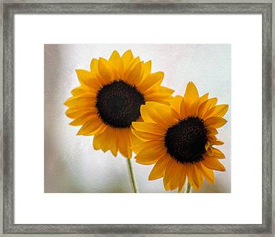 Sunny Flower On A Rainy Day Framed Print by Tammy Espino