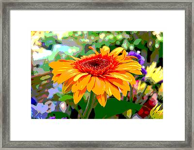 Framed Print featuring the photograph Sunny Gerbera by Jocelyn Friis