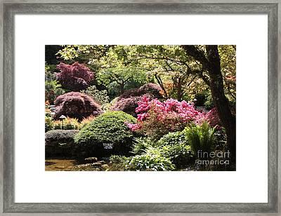 Sunny Japanese Garden Framed Print by Carol Groenen