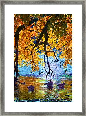Sunny Framed Print by Kat Besthorn