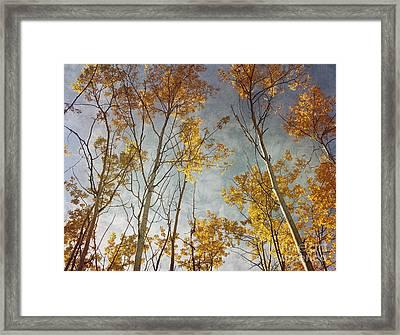 Sunny Leaves Wide Framed Print by Priska Wettstein