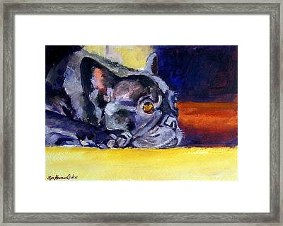 Sunny Patch French Bulldog Framed Print by Lyn Cook
