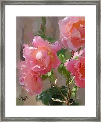 Sunny Roses Framed Print