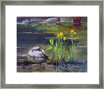 Sunny Side Framed Print by Sharon Weaver