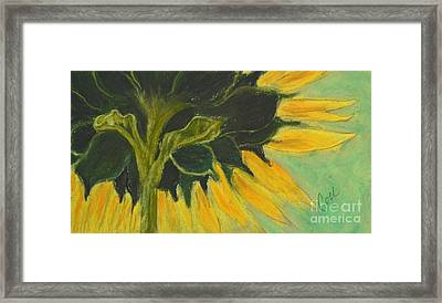 Sunny Side Up Framed Print by Cori Solomon