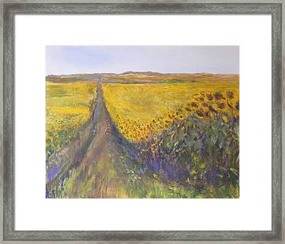 Sunny Side Up Framed Print by Helen Campbell