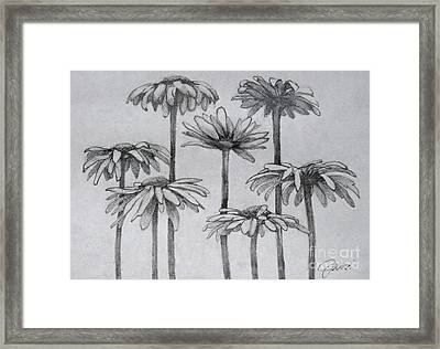 Sunny Side Up Framed Print by Jani Freimann