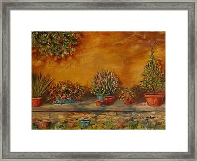 Sunny Sideyard Framed Print
