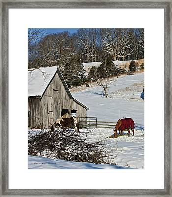 Framed Print featuring the photograph Sunny Snow Day by Denise Romano