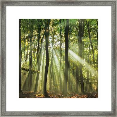 Sunny Start To The Day ........ Framed Print