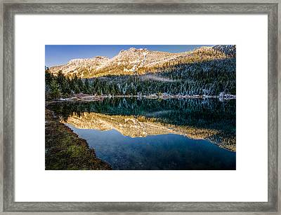 Sunny Tops And Icy Skirts At Gold Creek Pond Framed Print by Brian Xavier