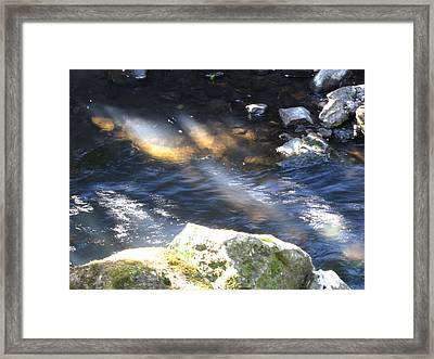 Sunray 2 Framed Print by Ingrid Van Amsterdam