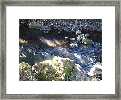Sunray 4 Framed Print by Ingrid Van Amsterdam