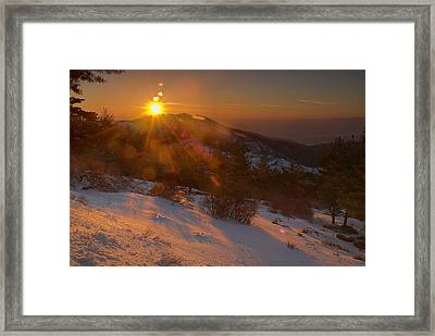 Sunrays At The Forest Framed Print by Guido Montanes Castillo